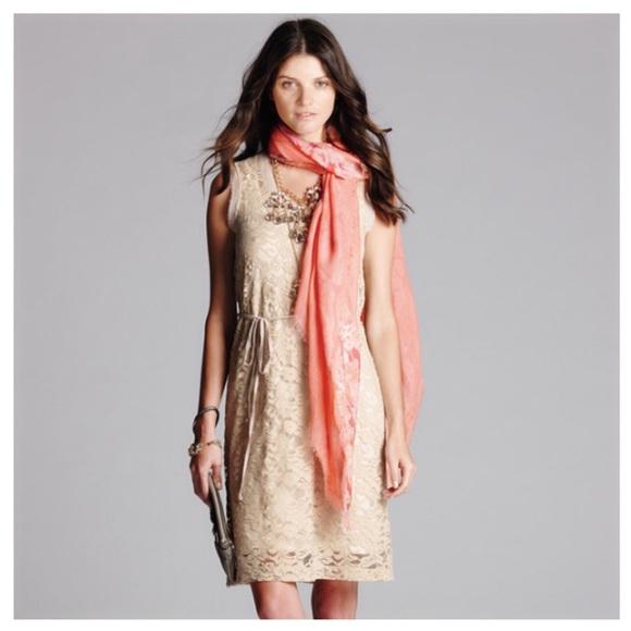 416add289022 Simply Vera Wang Chiffon   Lace Sheath Dress